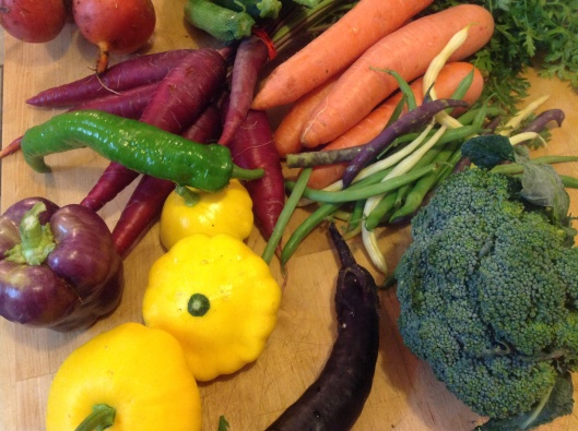 Vibrant yellow squash and purple bell pepper ...new arrivals at SFC Farmers Market, downtown Austin Sat. Mornings.