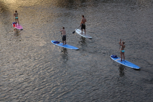 During photo shoot practice Friday night I caught this bunch cooling off on Town Lake, going under the Lamar Street Bridge