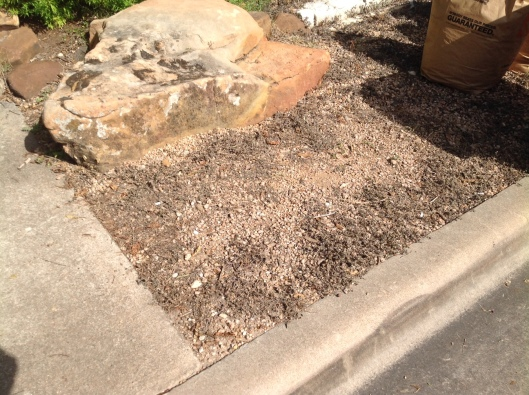 I shot this pic today. No green weeds around the rock..yipppeeee!! Getting back to that base gravel layer.
