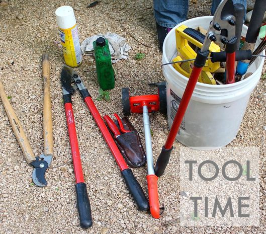 It was so cool Colleen brought a bucket o garden tools. I told her I felt like a garden geek -- as she was oiling my new bypass pruners. She loves finding old gardening tools at garage sales...and I love her for that.