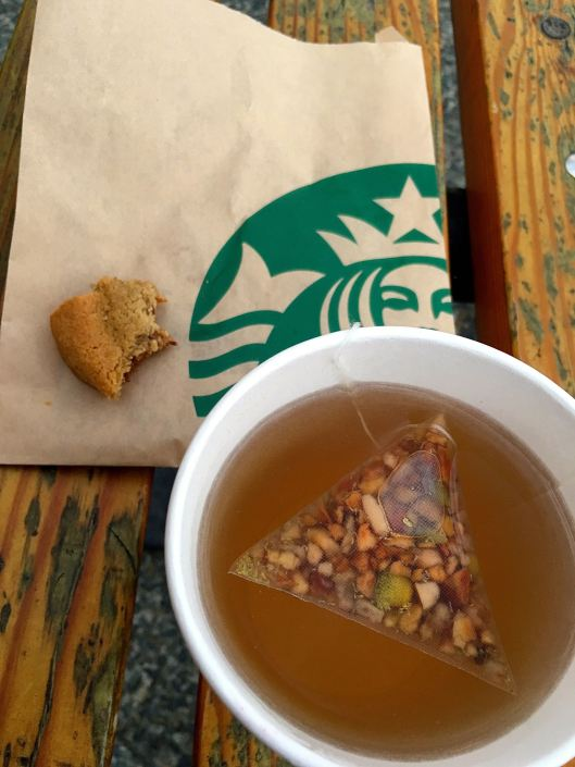 I ended my day on a bench overlooking the bay, with a Peach Tranquility Tea and a chocolate chunk cookie.