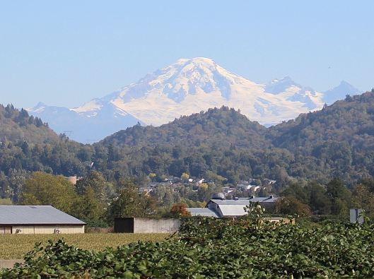 Mount Baker as seen from Abbotsford, B.C.