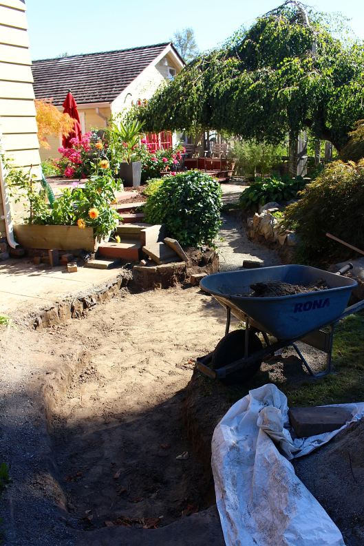 To give you an idea of how long this path is -- we counted 30 trips to dump the wheelbarrow that we loaded with excavated dirt. (That was just today. In total there have been about 60 trips.)