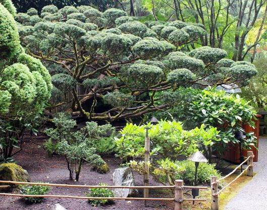 My fav was the Japanese Zen Garden.